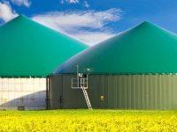 1 Karow, Oehna und Vosshohlen 3 Biogasanlagen, Strom für ca. 10.000 Haushalte